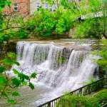 Angel Falls by Miranda Liasson